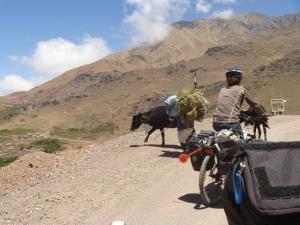 VTT Maroc Atlas
